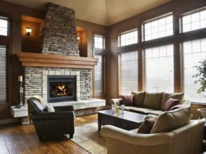 Traditional Living room interior style